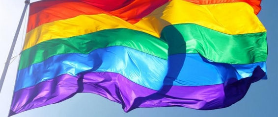 Hot Sale Rainbow Flag 3x5FT 90x150cm Lesbian Gay Pride Polyester LGBT Flag Banner Polyester Colorful Rainbow 1024x1024